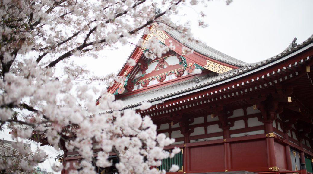 voyage d couverte du japon premier jour tokyo 1 re. Black Bedroom Furniture Sets. Home Design Ideas